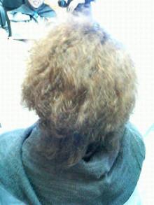 髪を傷める美容師