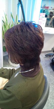 マダムの艶髪