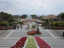 沖縄・お花